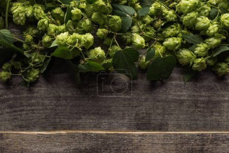 Photo for Top view of green hop on wooden rustic table with copy space - Royalty Free Image