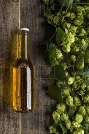 top view of beer in bottle near green hop on wooden background