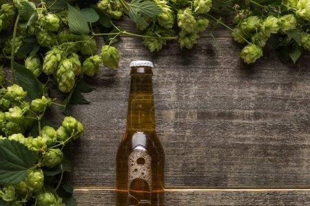 vue du dessus de la bière en bouteille avec houblon vert sur table rustique en bois