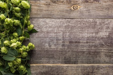 top view of green hop on wooden background with copy space