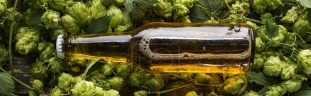 top view of beer in bottle on green hop on wooden background, panoramic shot