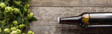 Photo pour Vue du dessus de la bière en bouteille près du houblon vert sur fond bois, panoramique - image libre de droit
