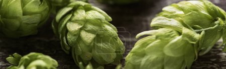 Photo for Close up view of fresh green hop on wooden table, panoramic shot - Royalty Free Image