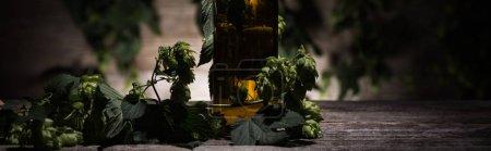 Photo pour Bière dans la bouteille avec le houblon vert sur la table en bois dans l'obscurité avec la lumière arrière, projectile panoramique - image libre de droit