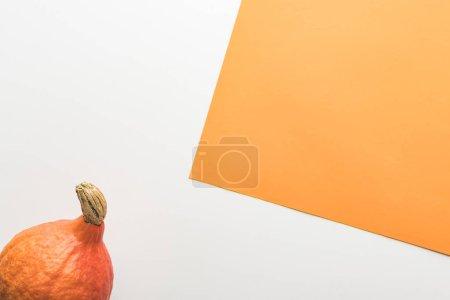 Foto de Vista superior de la calabaza sobre fondo blanco y naranja - Imagen libre de derechos