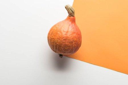 Photo pour Vue supérieure de la citrouille sur le fond blanc et orange - image libre de droit