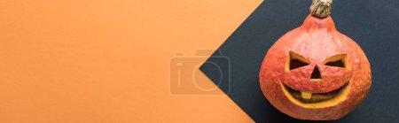 Photo pour Plan panoramique de citrouille d'Halloween sur fond noir et orange - image libre de droit