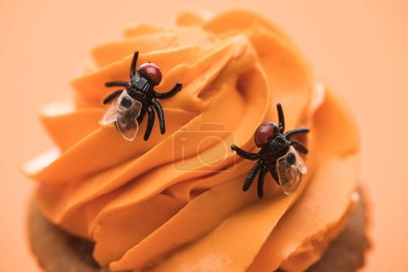 close up view of spooky Halloween cupcake with flies on cream isolated on orange