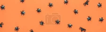 top view of scary spiders on orange background, panoramic shot