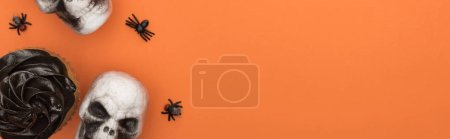 top view of cupcake, decorative skulls and spiders on orange background with copy space, panoramic shot