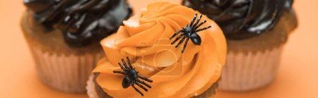 selektiver Fokus von leckeren Halloween-Cupcakes mit Spinnen auf orangefarbenem Hintergrund, Panoramaaufnahme