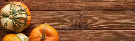 Photo pour Plan panoramique de citrouilles crues sur une surface en bois brun - image libre de droit