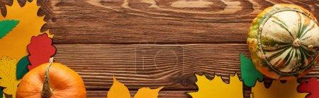 Foto de Plano panorámico de calabazas en la superficie de madera con hojas de papel de color - Imagen libre de derechos