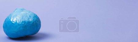 Photo pour Plan panoramique de citrouille bleue peinte sur fond violet - image libre de droit