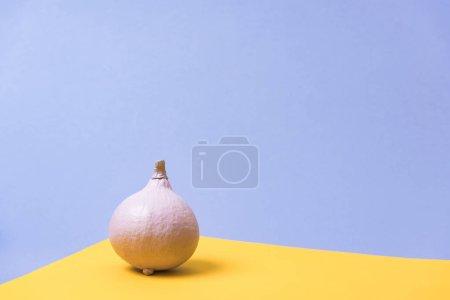 Photo pour Citrouille peinte sur fond violet et jaune - image libre de droit