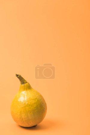 Photo pour Citrouille jaune peinte sur fond orange coloré - image libre de droit