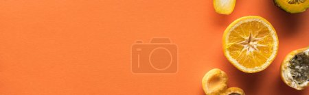 Photo for Top view of yellow fruits on orange background with copy space, panoramic shot - Royalty Free Image