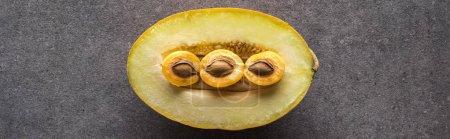 Photo pour Vue de dessus du melon et des abricots sur fond gris avec espace de copie, vue panoramique - image libre de droit