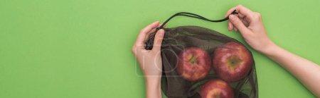 Photo pour Vue recadrée de femme retenant des pommes dans le sac écologique ami d'isolement sur le vert, projectile panoramique - image libre de droit