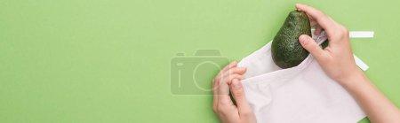 Photo pour Vue recadrée de femme mettant l'avocat dans le sac écologique amical d'isolement sur le vert, projectile panoramique - image libre de droit