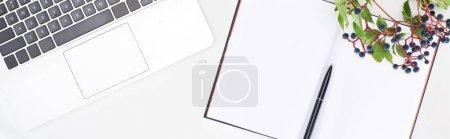 Foto de Foto panorámica de cuaderno en blanco con pluma cerca del portátil y ramita de uvas silvestres con hojas verdes y bayas aisladas sobre blanco. - Imagen libre de derechos