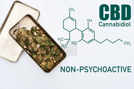 Photo for Top view of marijuana buds in metal box on white background with cbd molecule illustration - Royalty Free Image