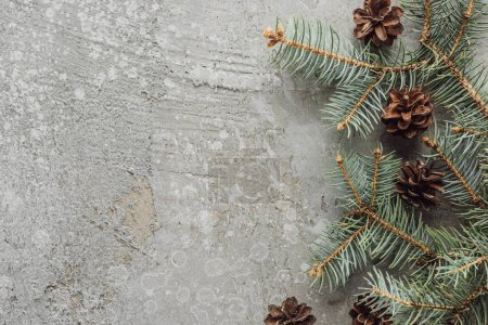 Photo for Top view of fir branches and dry cones on grey stone surface - Royalty Free Image