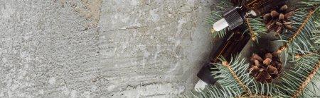 Photo pour Photo panoramique de bouteilles contenant de l'huile naturelle près de branches de sapin et de cônes secs sur une surface de pierre grise - image libre de droit