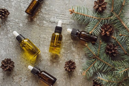 Photo for Top view of bottles with natural oil near fir branches and dry cones on grey stone surface - Royalty Free Image