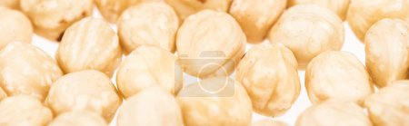 Photo for Close up view of hazelnut scattered isolated on white, panoramic shot - Royalty Free Image
