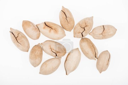 Photo for Top view of whole pistachios in shell scattered isolated on white - Royalty Free Image