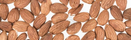 Photo for Top view of almond nuts scattered isolated on white, panoramic shot - Royalty Free Image