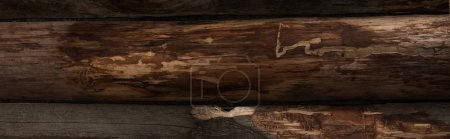 Photo for Top view of empty brown wooden logs background, panoramic shot - Royalty Free Image