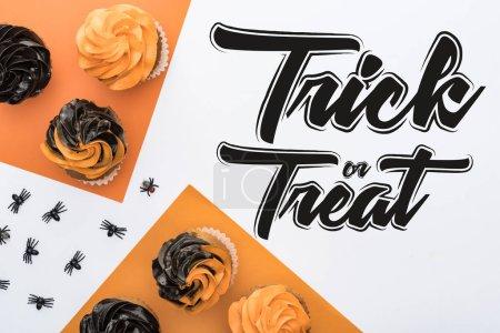 Photo pour Vue du dessus de délicieux cupcakes d'Halloween avec des araignées sur fond orange et blanc avec astuce ou traiter illustration - image libre de droit