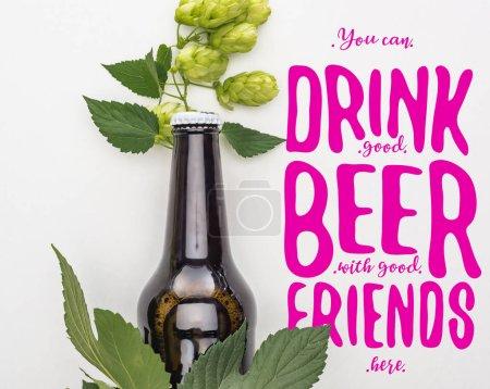 Photo pour Vue du dessus de la bière en bouteille avec le houblon vert de floraison sur fond blanc avec le violet vous pouvez boire de la bonne bière avec de bons amis ici illustration - image libre de droit