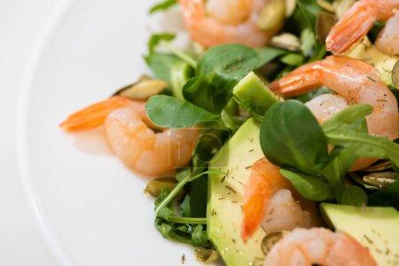 Photo pour Vue rapprochée de la salade verte fraîche aux crevettes et avocat sur assiette - image libre de droit