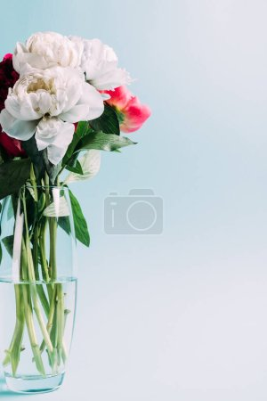 Photo for Bouquet of pink and white peonies in glass vase on blue background - Royalty Free Image