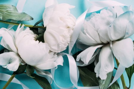 Photo pour Vue de dessus des pivoines blanches avec ruban sur fond bleu - image libre de droit