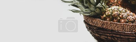 Photo for Fresh delicious pineapple in basket isolated on white background, panoramic orientation - Royalty Free Image