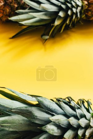 Photo for Selective focus of green leaves on pineapples on yellow background - Royalty Free Image