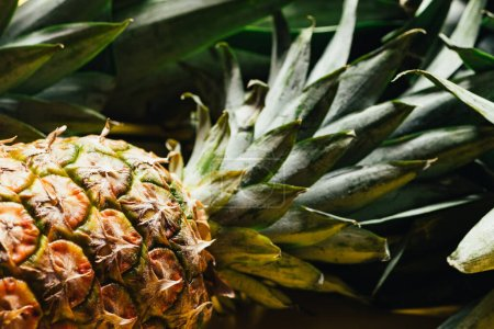 Photo for Close up view of fresh ripe pineapple with green leaves - Royalty Free Image