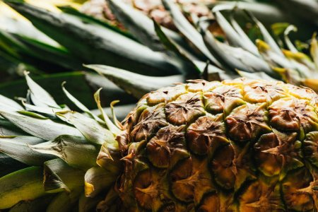 Photo for Selective focus of fresh ripe pineapple with green leaves - Royalty Free Image