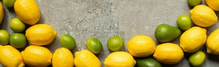 top view of colorful limes, avocado and lemons on grey concrete surface, panoramic shot