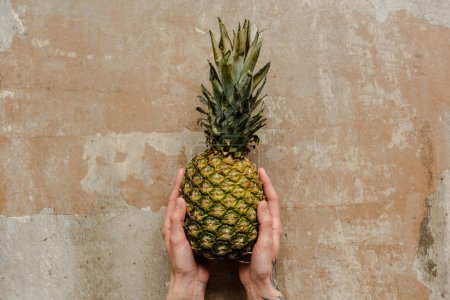 Photo for Cropped view of woman holding ripe pineapple on weathered surface - Royalty Free Image
