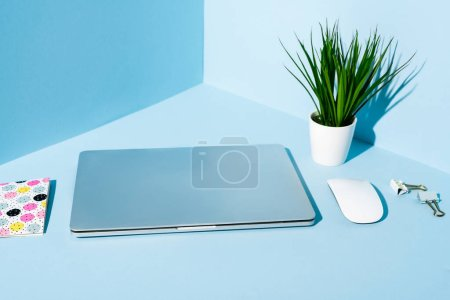 Photo for Modern laptop with stationery and plant at blue workplace - Royalty Free Image