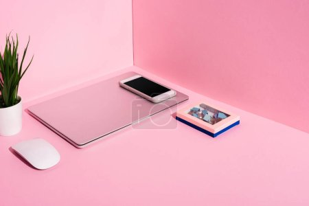 modern gadgets, binder clips and plant on pink background