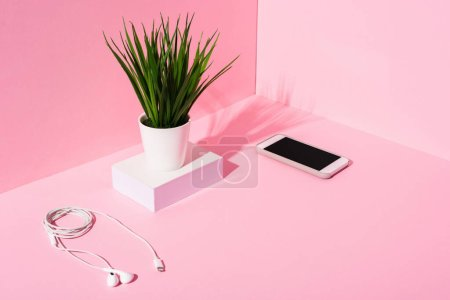 smartphone with blank screen, earphones and plant on pink background