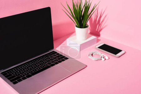 Photo for Modern gadgets with blank screens, earphones and plant on pink background - Royalty Free Image