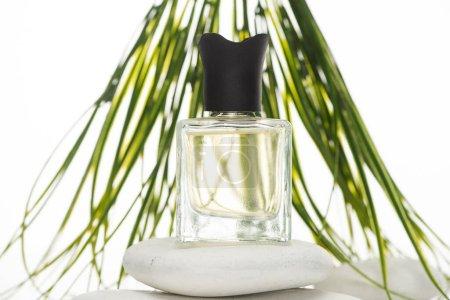 Photo pour Foyer sélectif de parfum d'intérieur en bouteille sur pierre de spa sur fond blanc - image libre de droit