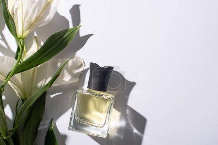 Photo pour Vue du dessus du parfum d'intérieur en bouteille près des lis sur fond blanc - image libre de droit